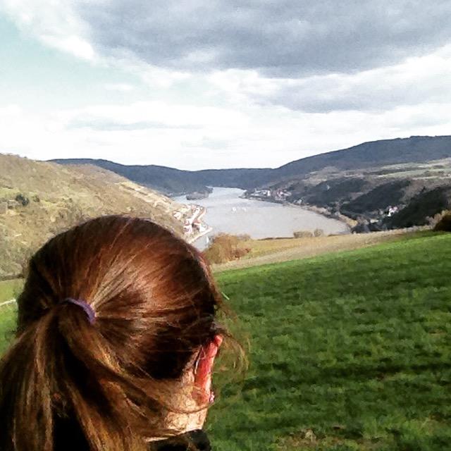 Rhein Burgen Weg