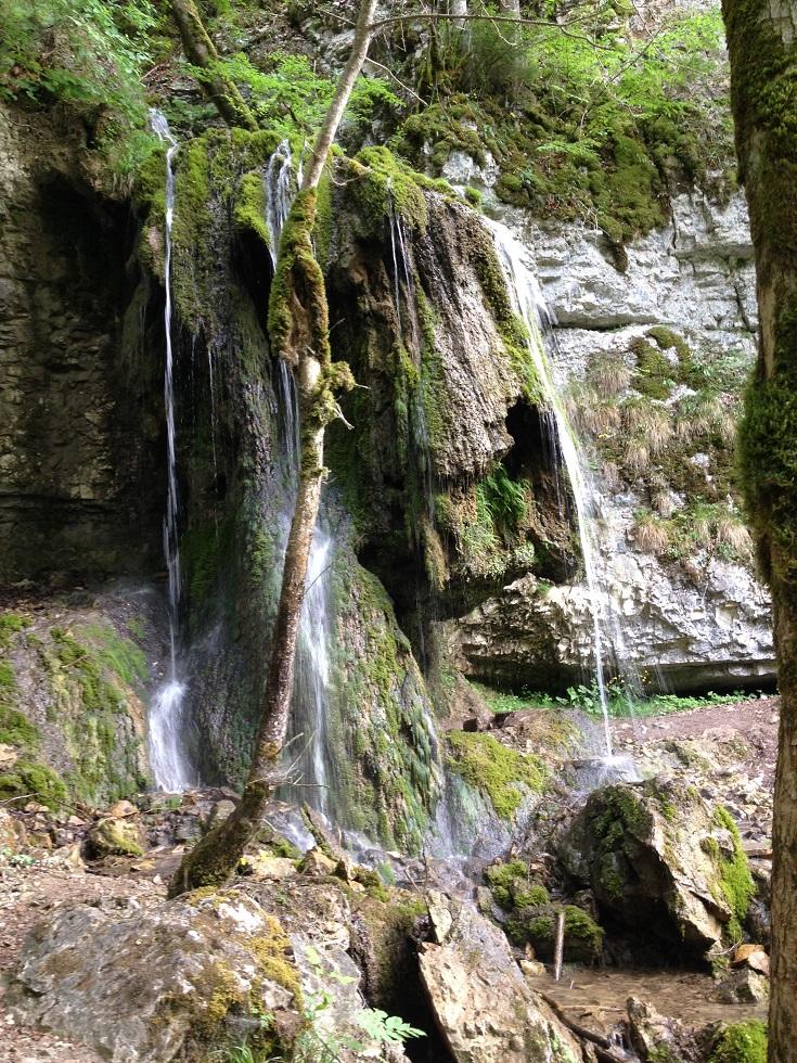 Gauchachschlucht und Wutachschlucht - Wandern im Schwarzwald