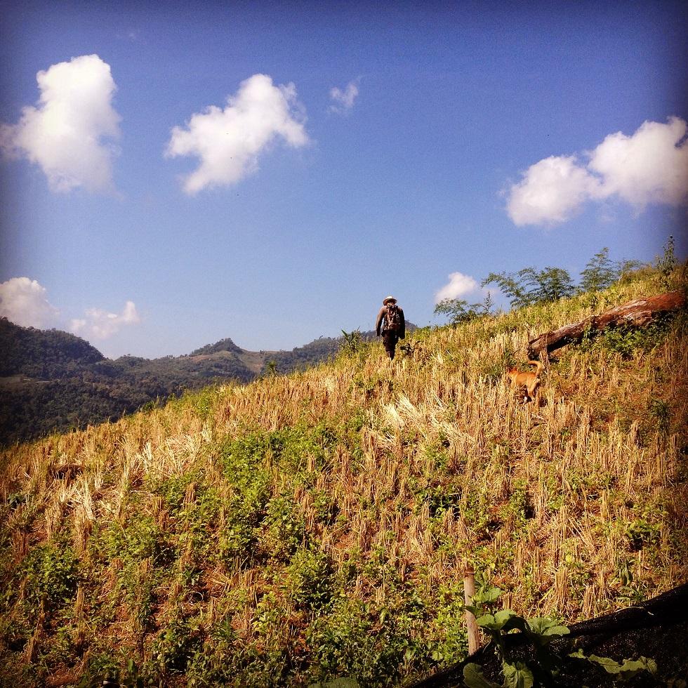 Trekking in Nordthailand, Chiang Mai