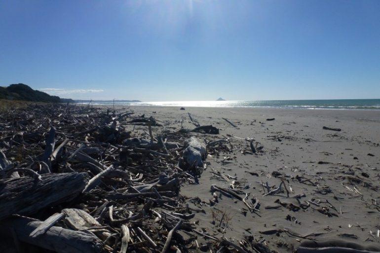 Ein Strand irgendwo in Neuseeland