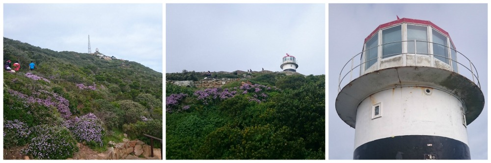 leuchtturm cape point