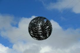 Wellington Fernball Neuseeland