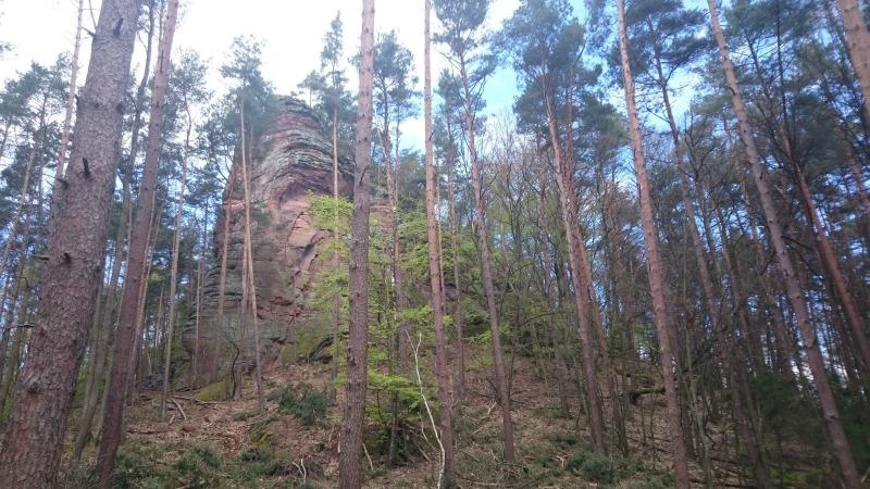 Dimbacher Buntsandstein Höhenweg,