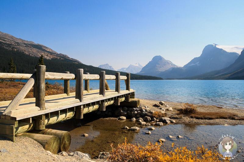 Bow Lake - Kanada Round Up