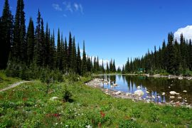 Revelstoke Nationalpark
