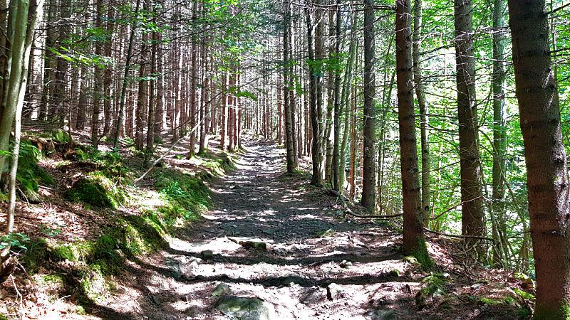 Wanderntipps für Sonthofen im Allgäu